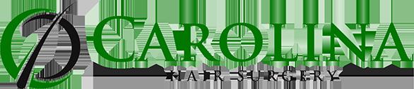 CHS-Logo-2019-web-Horizontal-586